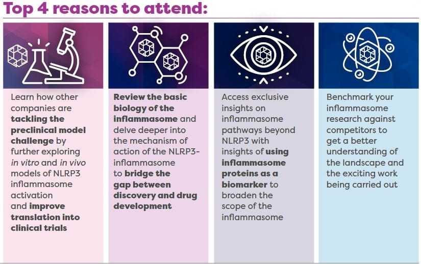top reasons to attend